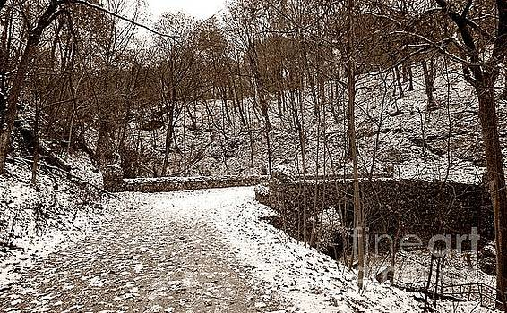 Snowy old stone bridge by Christopher Shellhammer