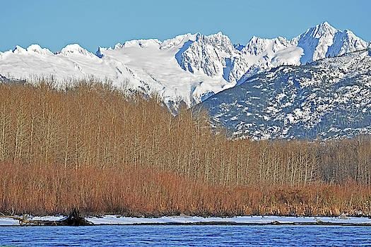 Susan Burger - Snowy Peaks