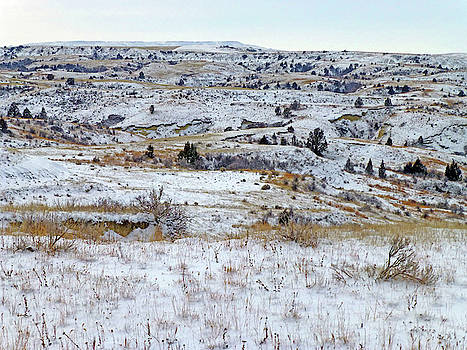 Snowy Slope County by Cris Fulton