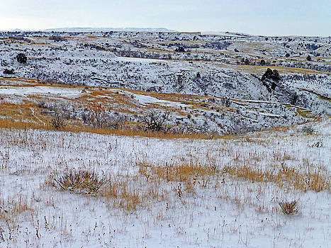 Snowy Slope County Territory by Cris Fulton