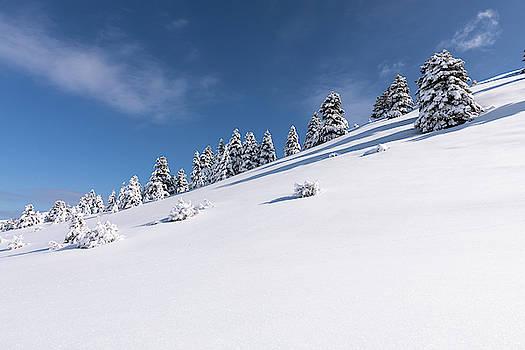 Snowy Slopes of Kalavryta by Lenochka Blonsky