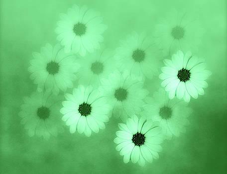 Soft Green Flower Harmony  by Johanna Hurmerinta