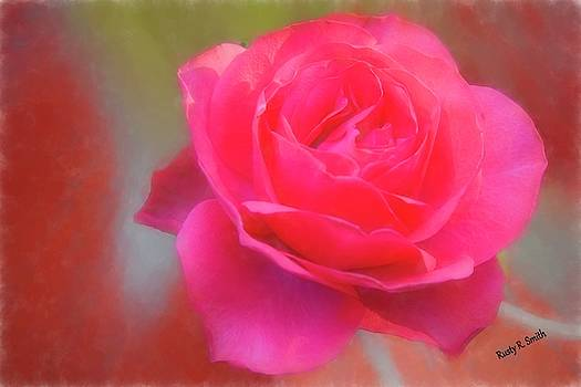 Soft red rose. by Rusty R Smith