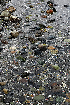Tom Trimbath - Soft Rocks