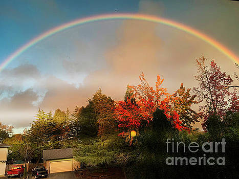 Somewhere Over the Rainbow by Leslie Hunziker