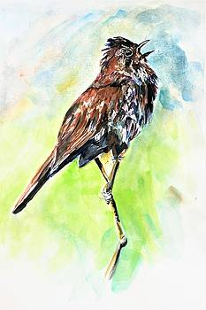 Song of the sparrow by Khalid Saeed
