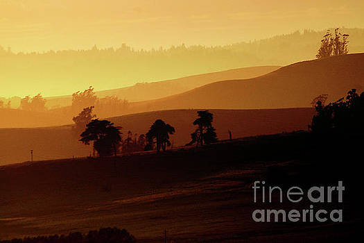 Sonoma County Mountain Ridges into the Sunset by Wernher Krutein