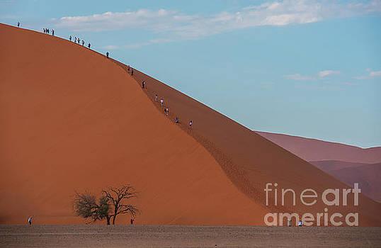 Sossusvlei Climbing Dune 45 by Mike Reid