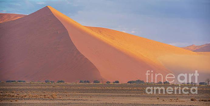 Sossusvlei Dunes Shades of Dawn by Mike Reid