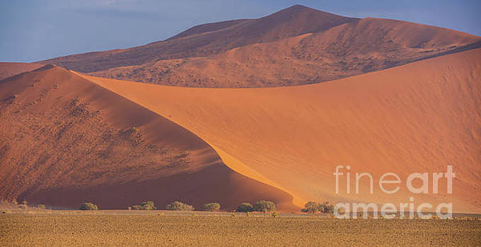Sossusvlei Dunes Walls of Sand by Mike Reid