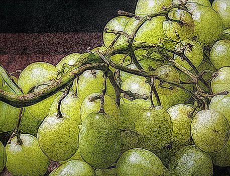 Sour Grapes by Robert Meyerson