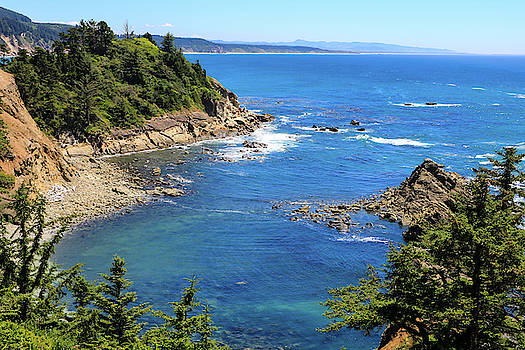 South Cove 1, Cape Arago, Oregon by Dawn Richards