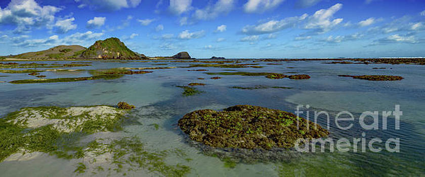 Asia Visions Photography - South Lombok Low Tide