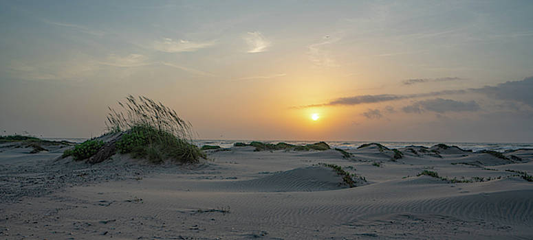 South Padre Dunes by Joey Waves