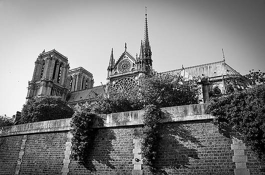 RicardMN Photography - South side of Notre-Dame de Paris before the fire of 2019 BW