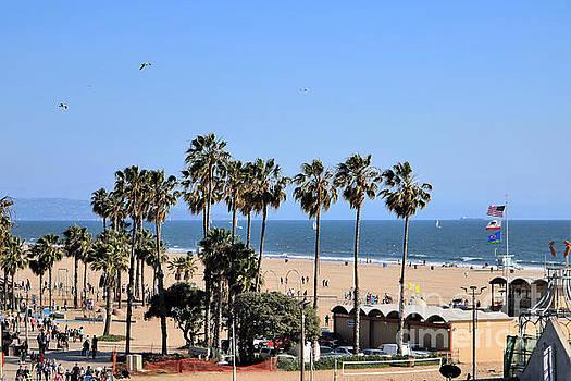 Diann Fisher - South Side Santa Monica Beach