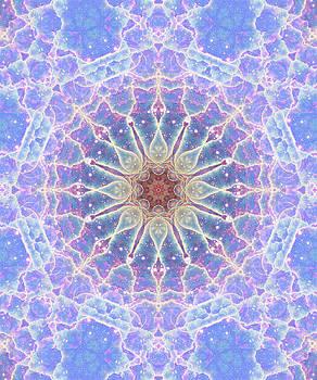 Space Mandala no2 by Grant Osborne