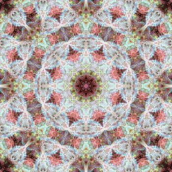 Space Mandala no5 by Grant Osborne