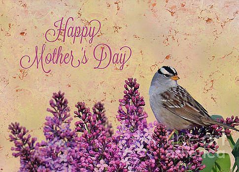 Sparrow in the Lilacs Mother's Day Card by Carol Groenen