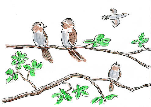 Sparrows chat in tree by Steve Clarke