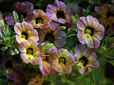 Speckled 6448 IDP_2 by Steven Ward
