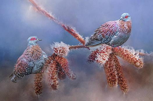 Speckled Pigeons by Cindy Lark Hartman