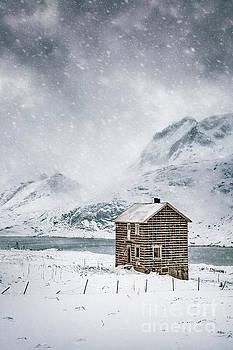 Spells Of Arctic Winters by Evelina Kremsdorf