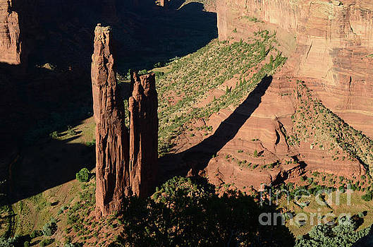 Spider Rock by Debby Pueschel