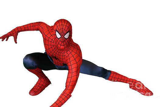 Spiderman by Cindy Manero
