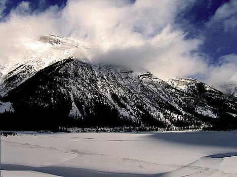 Splendid Winter Day by Shirley Sirois