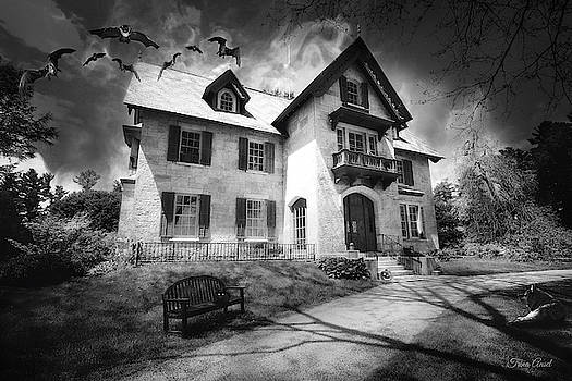 Spooky Mansion in Black and White by Trina Ansel