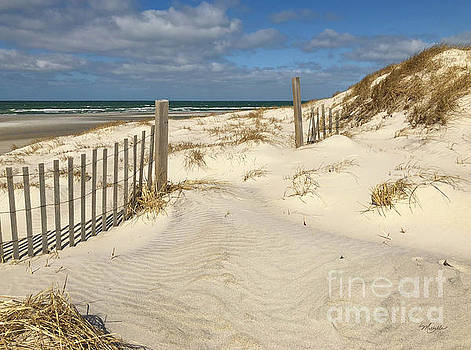 Michelle Constantine - Spring at the Beach on Cape Cod