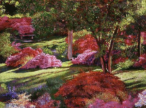 Spring Azaleas In The Park by David Lloyd Glover