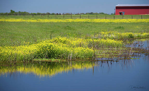 Spring color on the farm 1 by Debby Richards