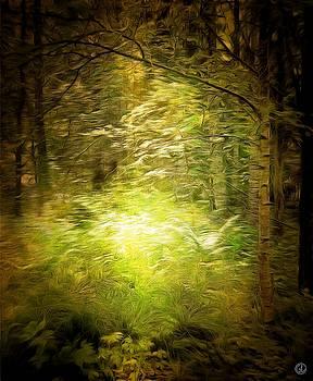 Spring dance on the forest floor by Gun Legler