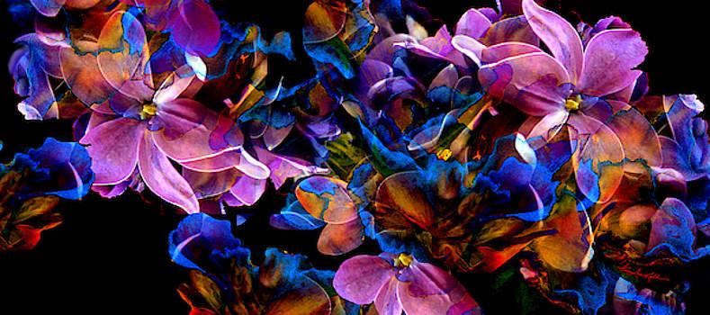 Spring Fantasy by Hanne Lore Koehler