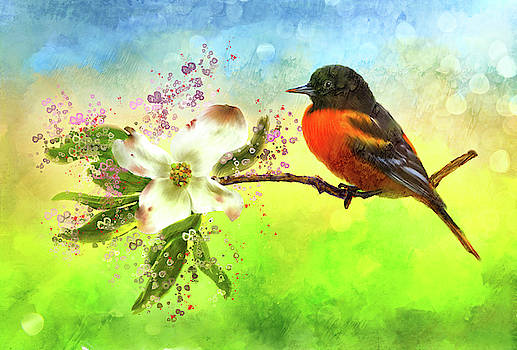 Spring Flower and Oriole by Mary Timman