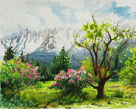 Spring in the Wallowas by Steve Henderson
