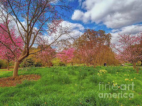 Spring is in the air #2 by Leigh Kemp