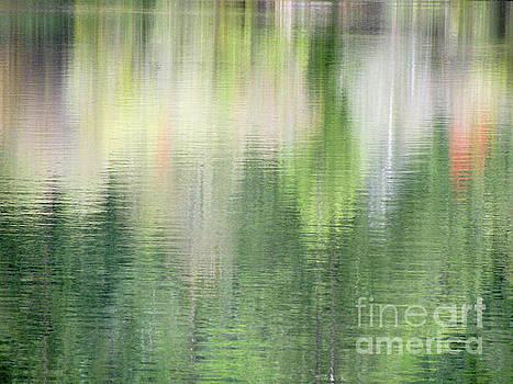 Spring Lake_3874_12 by Tari Kerss