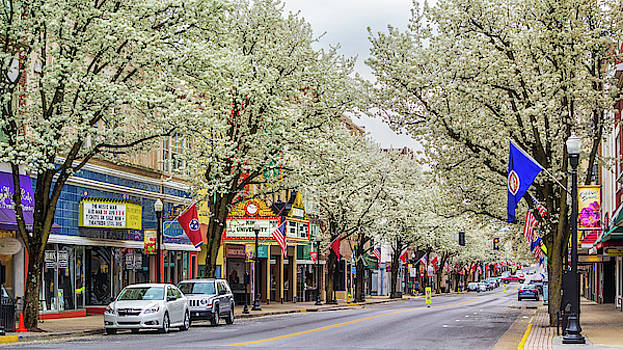 Spring on State Street 2016 by Greg Booher
