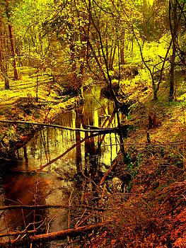Henryk Gorecki - Spring on the Lubianka River