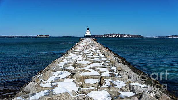 Spring Point Ledge lighthouse by Alana Ranney