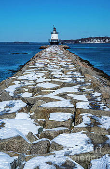 Spring Point Ledge Lighthouse II by Alana Ranney