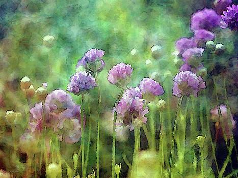 Spring Puffs 6338 IDP_2 by Steven Ward