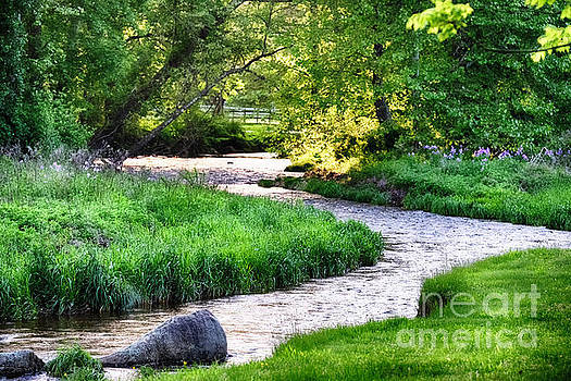 Spring Scenic with the Rockaway Creek by George Oze