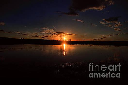 Spring sun fall  by Jeff Swan
