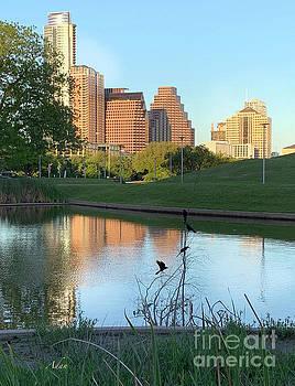 Felipe Adan Lerma - Spring Sunset Austin Skyline Butler Park