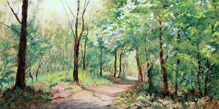 Spring Sunshine - Sunlit pathway through the forest by Bonnie Mason
