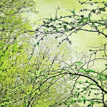 Spring Talks by Margaret Koc